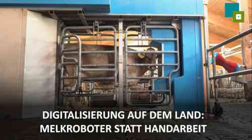 Vorstellung des Milchviehbetriebs Arnold - Scheidegg (Bayern)