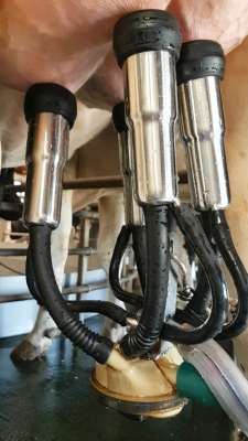 Griffe Flo-Star Xtreme et manchon Magnum Turbo 450: pour plus de légèreté et rapidité de traite!