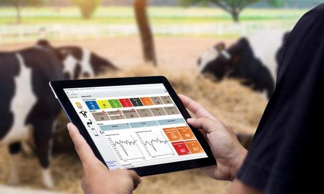 SmartDairy HerdMetrix