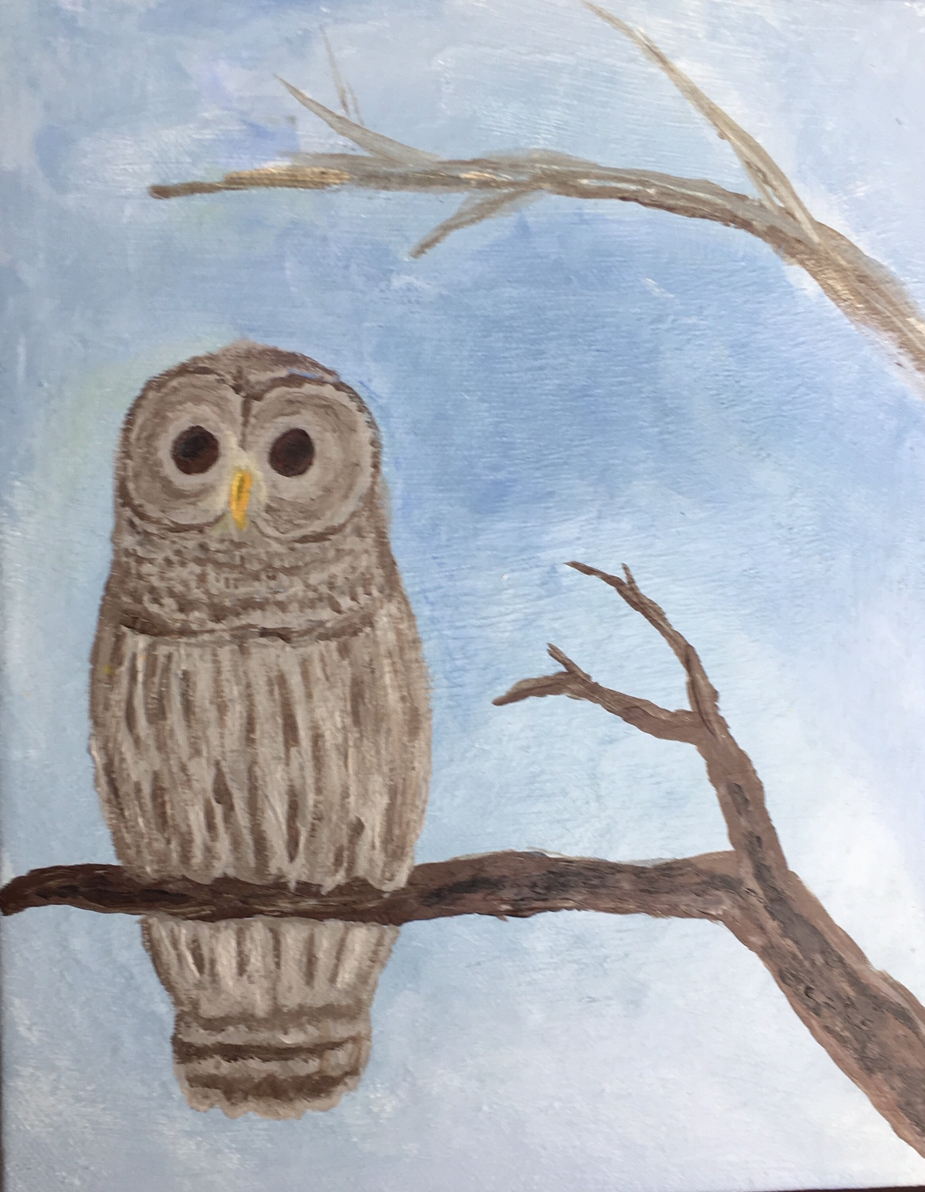 Backyard Owl Painting