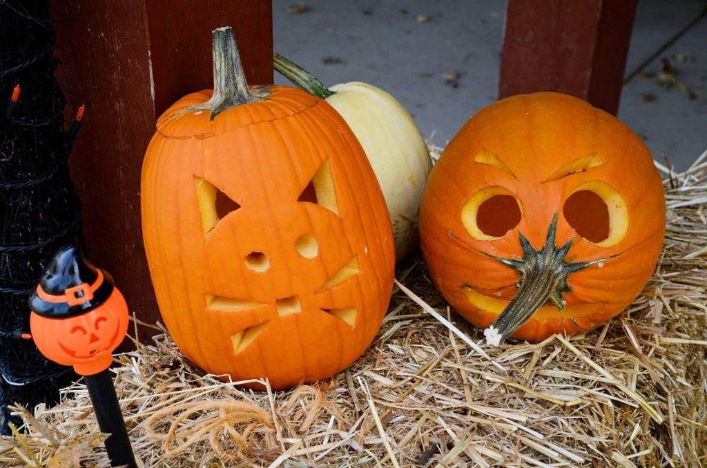 Dodge Nature Center Halloween Extravaganza 2020 Halloween Hoopla Dodge Nature Center
