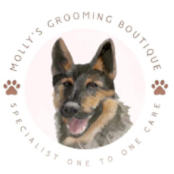 How Do You Recognize If Your Canine's Glands Are Full? As Well As Various Other Concerns Answered dog%20grooming%20stourport