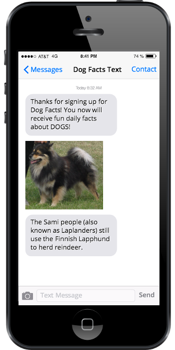 Image showing sample dog facts text messages.