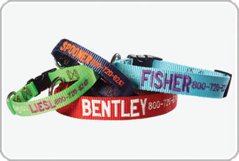 Shop Personalized Dog Collars from dogIDs.