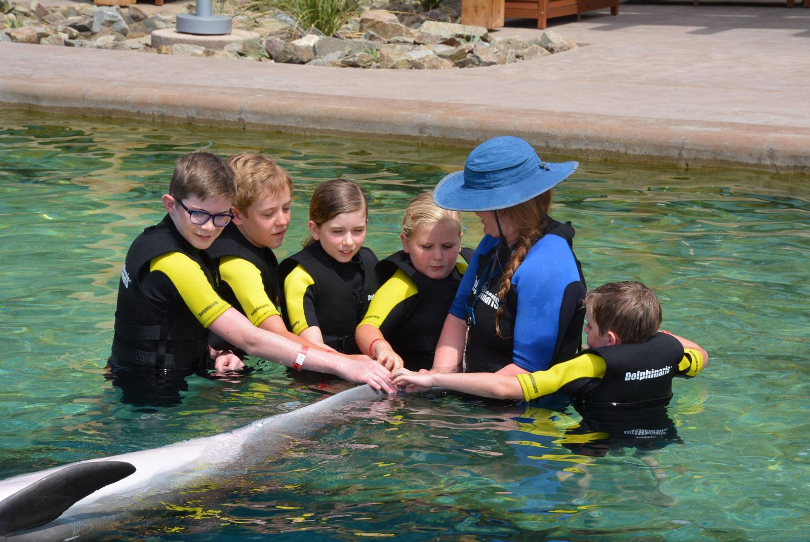 Summer Camp in Phoenix 2018 - Dolphin Explorer - Dolphinaris Arizona
