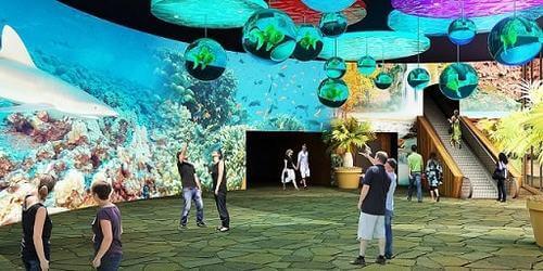 Odyssea Aquarium -Activities in Phoenix for Kids