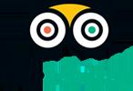 Icon Tripadvisor