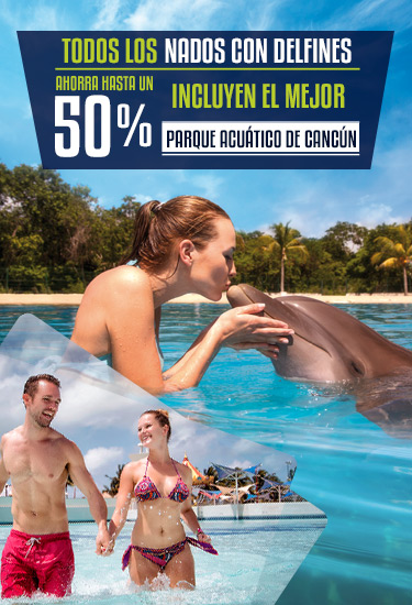 Ahorra hasta un 50% en tu nado con delfines en Cancún.