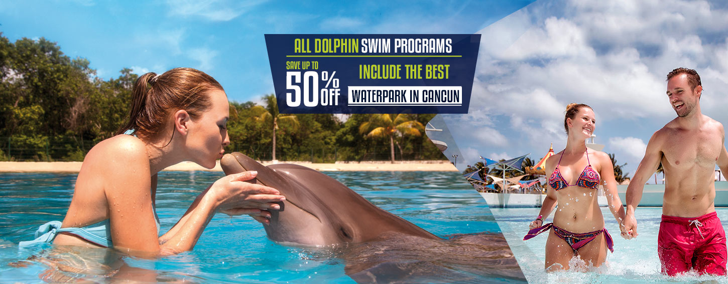 All Dolphin Swims include the Best Water Park in Cancun - Ventura Park