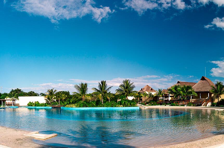 playa del carmen-5th avenue-Best Dolphinariums In the Mayan Riviera