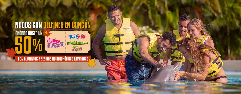 Nada con delfines en Cancún o Riviera Maya más entrada gratis a Ventura Park Cancún con alimentos y bebidas no alcohólicas ilimitadas.