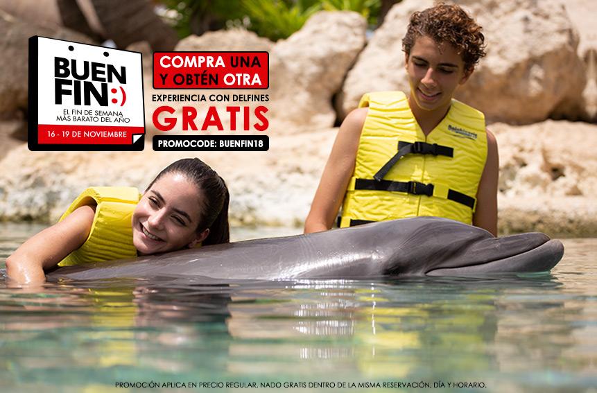 Ofertas de Buen Fin 2018 El Fin de Semana Más Barato del Año - Nada con delfines en Cancún y Riviera Maya