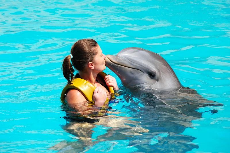 Nado con delfines en Cancún.