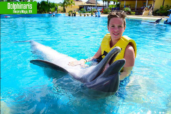What to see in the Riviera Maya Dolphinaris
