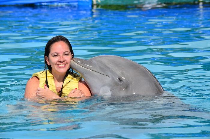 beso delfin