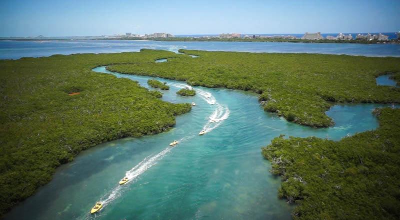Jungle tour por la Laguna Nicupte. Ahora también con nado con delfines.
