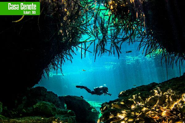 que ver en la riviera maya Casa Cenote