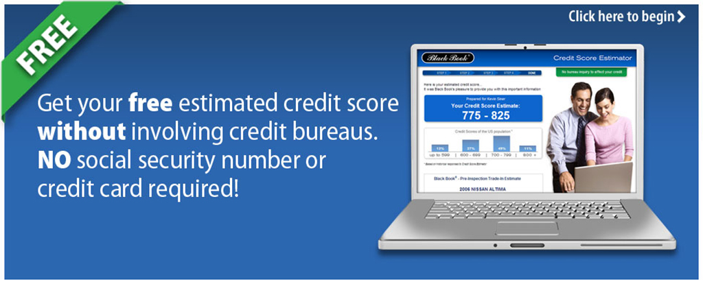 Credit Score Estimator