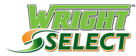 Pre-Owned Inventory Wright Motors