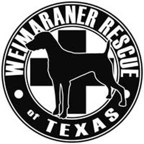 Weimaraner Rescue of Texas