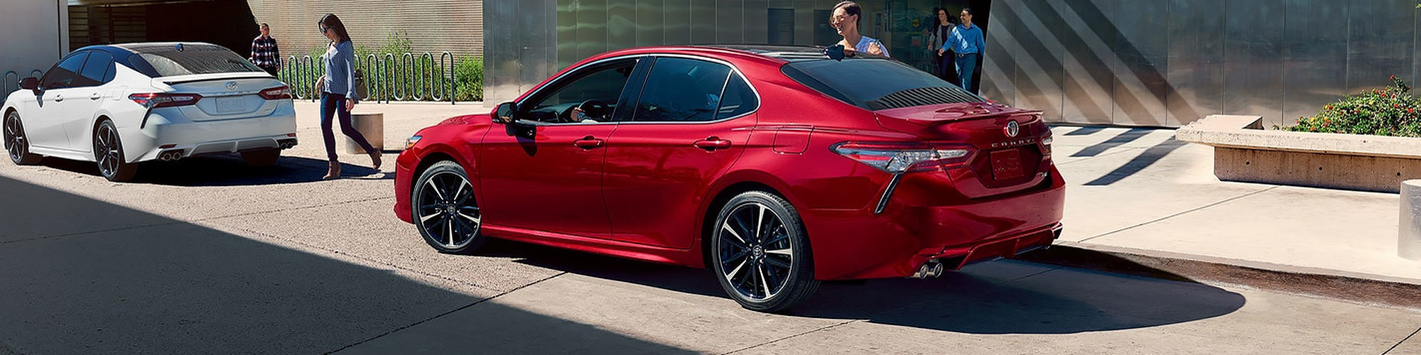 2019 Toyota Camry Sedan | Toyota Cars for Sale in