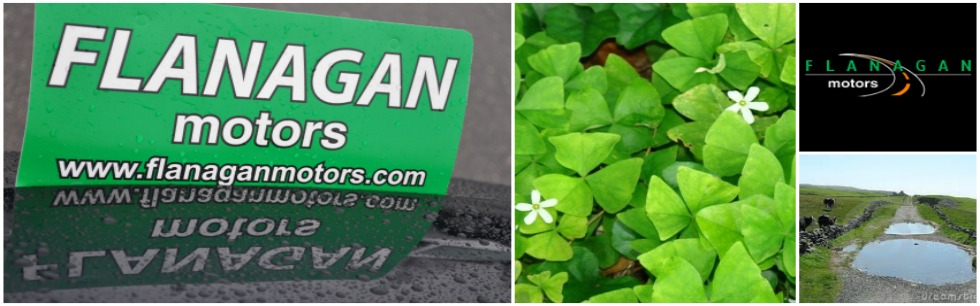 St. Patrick's Day | Flanagan Motors | Missoula, MT