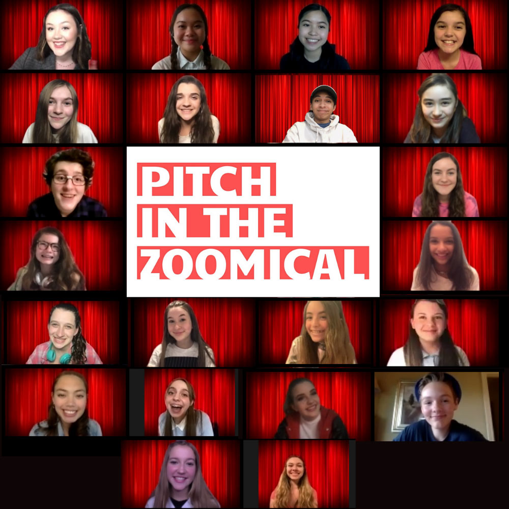 PITCH IN: THE ZOOMICAL