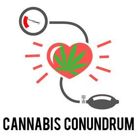 cannabis-conundrum