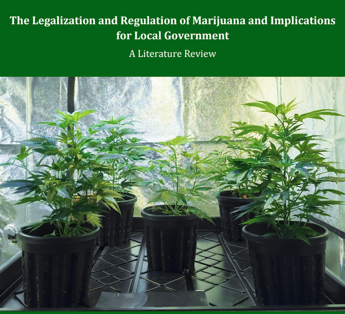 The Legalization and Regulation of Marijuana and Implications for Local Government