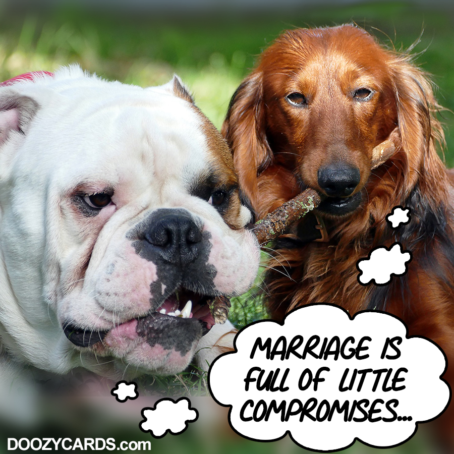 Marriage Compromises