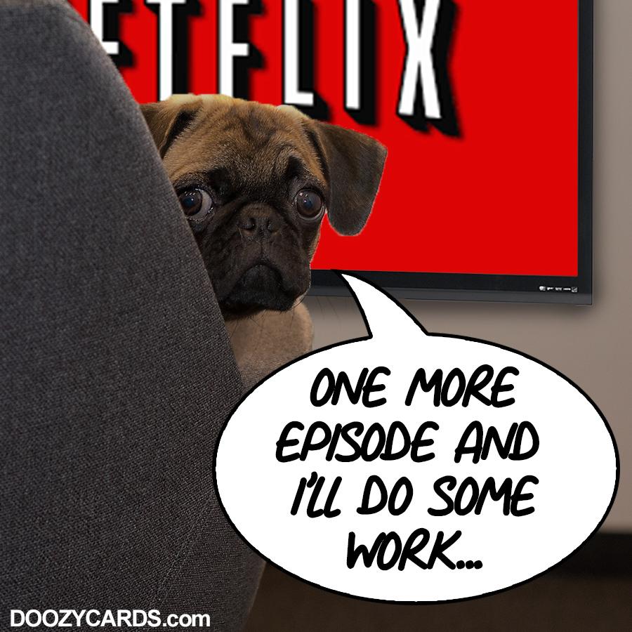 Netflix Pug