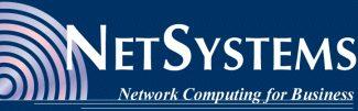 NetSystems, LLC logo