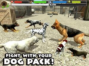 Screenshot Stray Dog Simulator on iPad