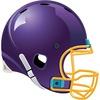 Minnesota Vikings 2010 News and Rumors