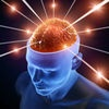 3D Neuro System