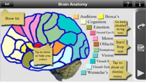 Screenshot Brain Anatomy on iPhone