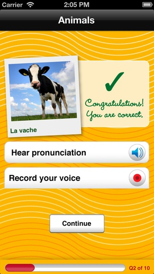 Screenshot Tapis French Vocab Quiz on iPhone