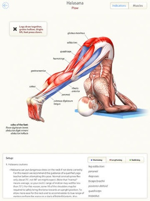 Screenshot 3D Yoga Anatomy Lite on iPad