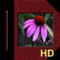 iAlbum HD