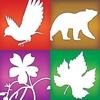 Audubon Guides Box Set