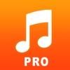Free Music Downloader Pro
