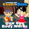How Our Body Works