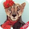 Crazy Animal Face Pro