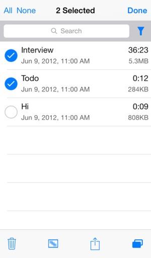Screenshot Audio Memos Pro on iPhone