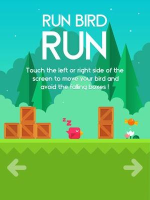 Screenshot Run Bird Run on iPad