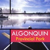 Algonquin Provincial Park Travel Guide