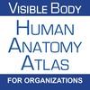 Human Anatomy Atlas for Organizations
