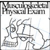 Musculoskeletal Physical Exam