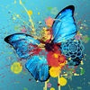 Beautiful Butterfly Wallpapers HD