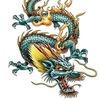 101 Dragon Tattoos